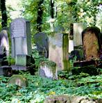"""Bli kjent med prosjektet """"Ta vare på våre gravsteder"""""""