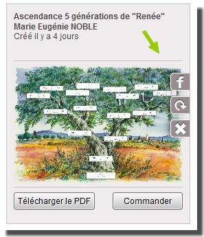 arbres4.jpg