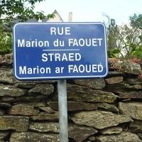 Marion DU FAOUET